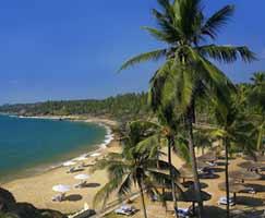 Tour To Cochin