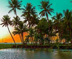 Cochin Holiday Package