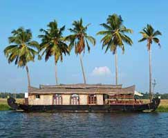Cochin Tourism Package